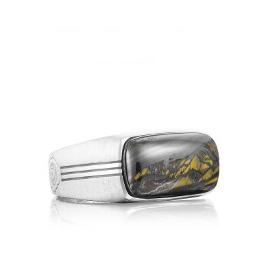 MR10239 Men's Silver Tiger Iron Fashion Ring